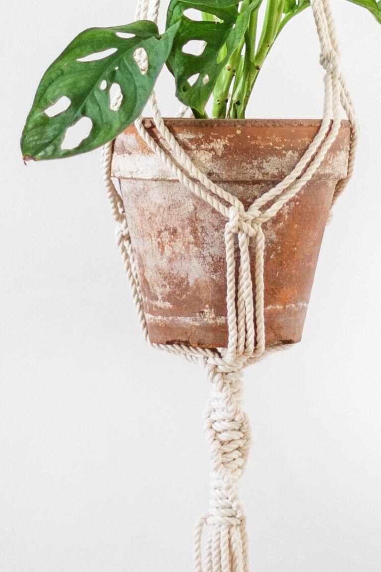 závěs na kytku planthanger